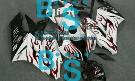 Flames Red INJECTION Fairing Kit Fit Honda CBR1000RR 2004-2005 36 A3
